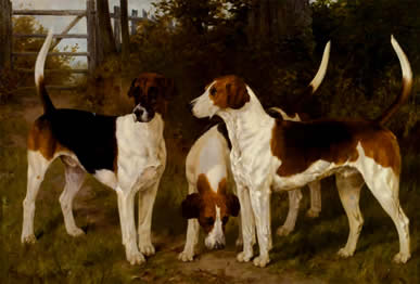 Authentic  Blinks English Hunting dogs